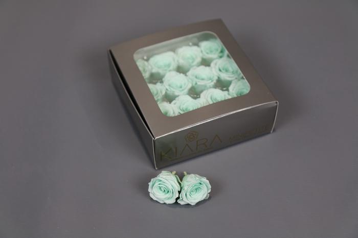 <h4>Rosa Preserved Minty Green Mini Petite</h4>