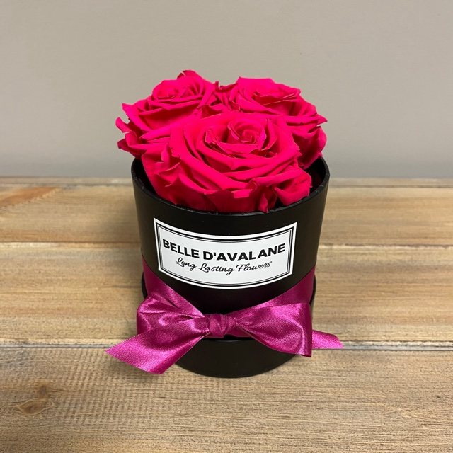 Box rd 10cm zwart-fuchsia