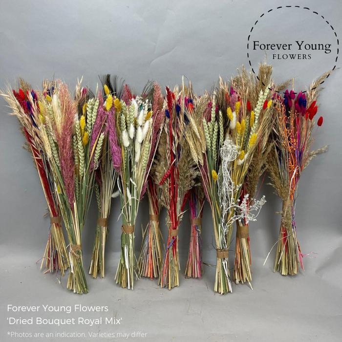 <h4>Dried Bouquet Royal Mix 10</h4>