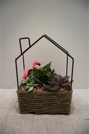 <h4>2179 Huis Mnd Flamingo</h4>