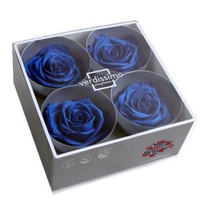 Roos Premium d.blauw