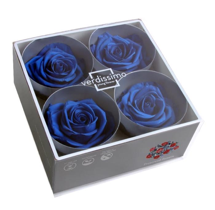 <h4>Roos Premium d.blauw</h4>