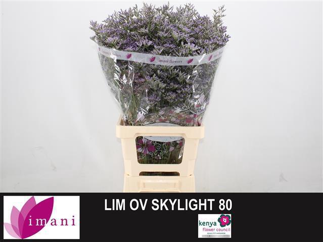 <h4>LIM OV SKYLIGHT</h4>