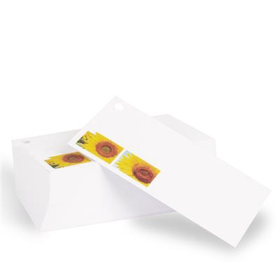 <h4>Bloemkaartje Zonnebloem wit - verpakt 100st</h4>