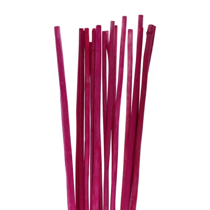 <h4>Dried articles Bamboostick 100cm x20</h4>