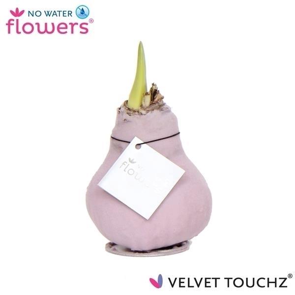 <h4>No Water Flowers Velvet Touchz® Lila</h4>