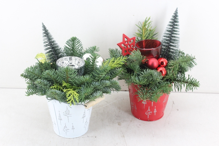 <h4>arr.. Kerst PL - Zink kerst rood/wit</h4>