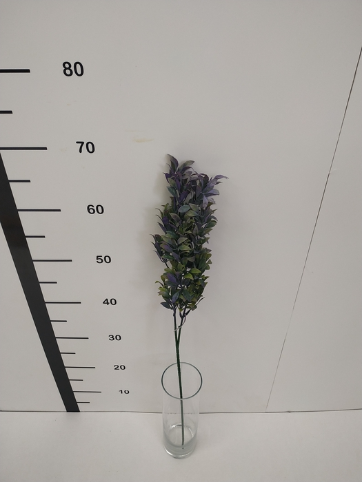 <h4>Haste folha plastico lila</h4>