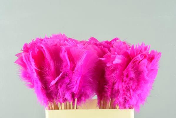 <h4>Stick Feather Pink 14cm</h4>