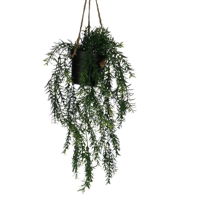 <h4>Silk Hangpot Asparagus 50cm</h4>