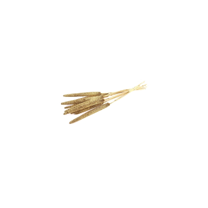 <h4>DRIED FLOWERS - BABALA GOLD ON NATURAL STEM 10PCS</h4>