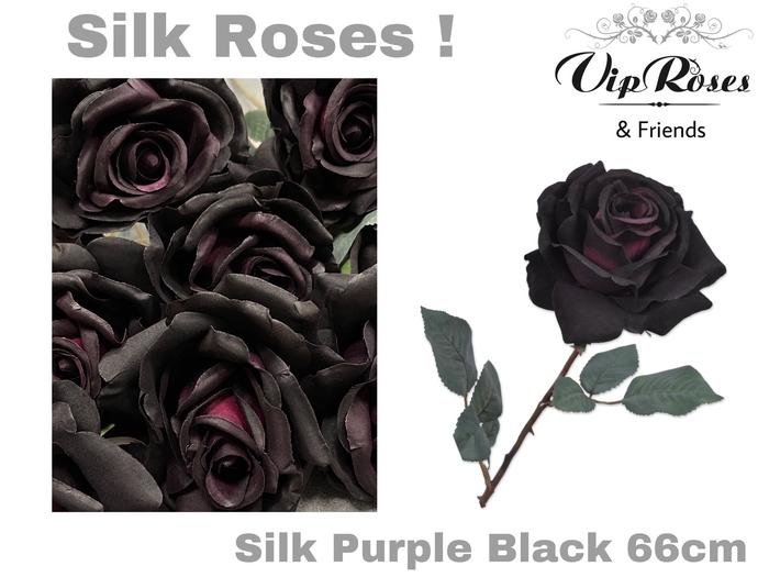 <h4>SILK PURPLE BLACK</h4>