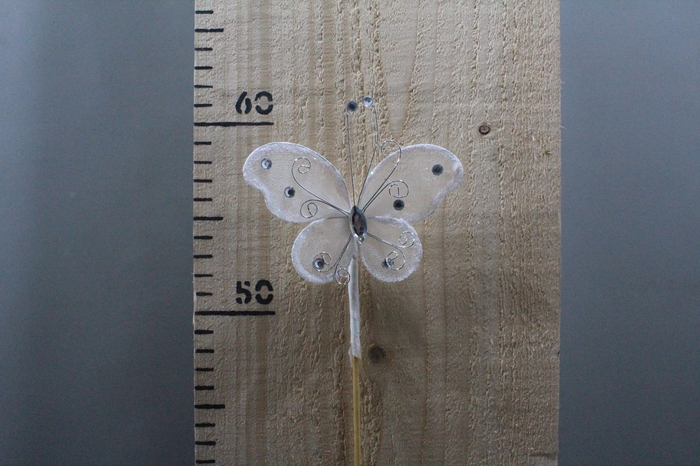 <h4>BUTTERFLY WHITE O/S H50 12PCS 260.0285</h4>