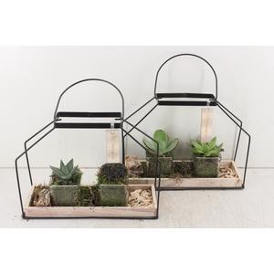 arr. MB - Metaal frame huis succulent