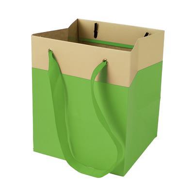 <h4>Sac Facile carton 12,5x11,5xH14,5cm vert</h4>