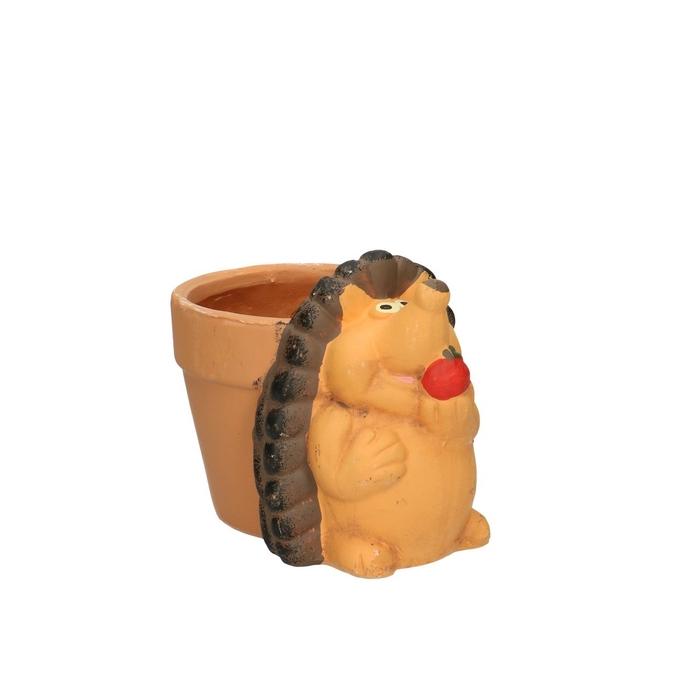 <h4>Sale Hedgehog pot d11/14.5*12cm</h4>