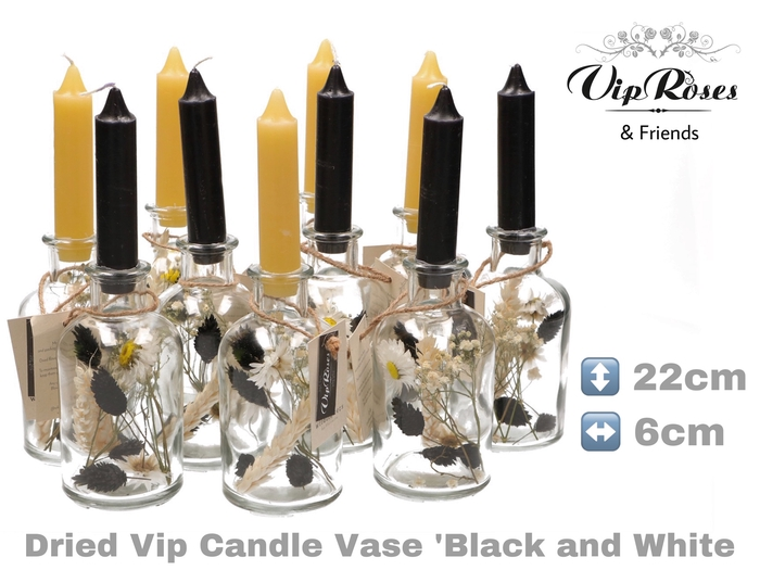 DRIED VIP CANDLE VASE  BL & WH