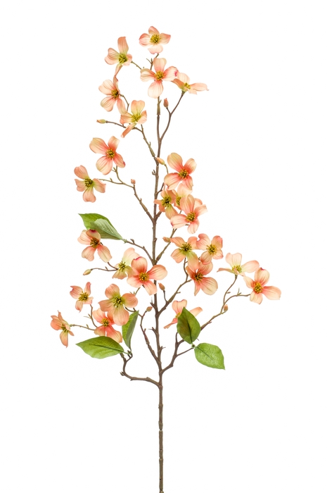 <h4>SILK DOGWOOD MINI SPRAY 83CM PEACH 423521</h4>