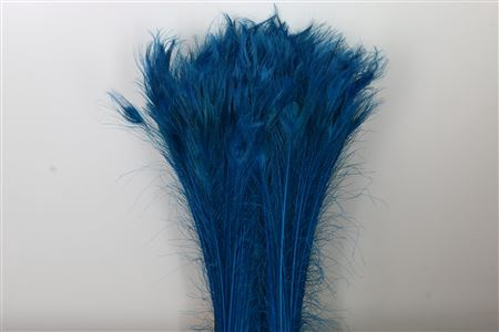 <h4>Dec Feather Peacock Blue</h4>