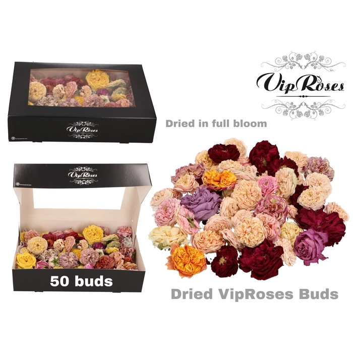 <h4>DRIED VIPROSES BUDS</h4>