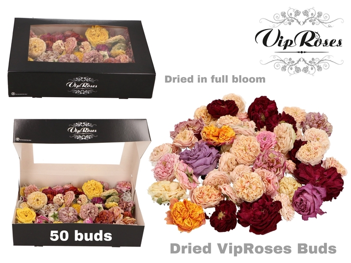 DRIED VIPROSES BUDS