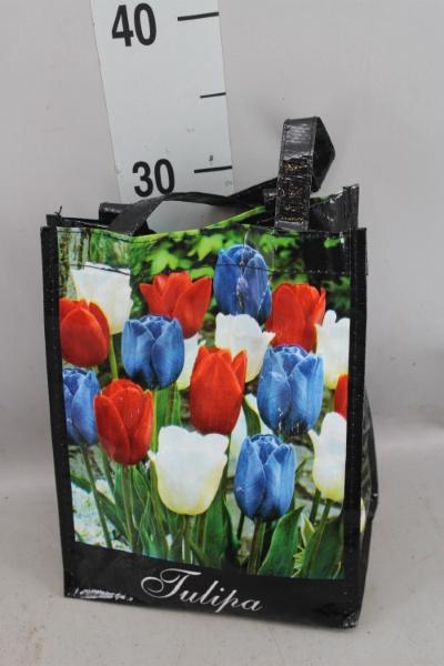 <h4>Tulipa   ...flowerbulbs</h4>