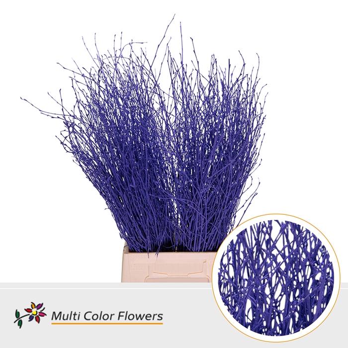 <h4>Berk Violet donker</h4>