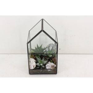 arr. SN A5 - Terrarium glasshouse