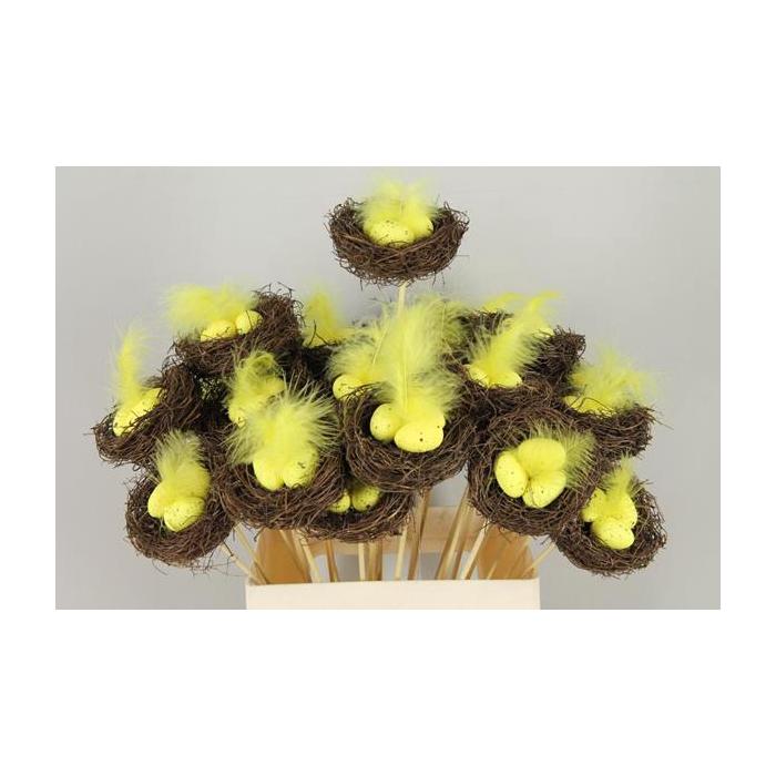 <h4>Stick Nest Salim + Eggs Yellow</h4>