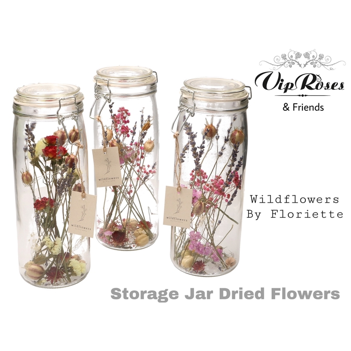 <h4>DRIED STORAGE JAR</h4>