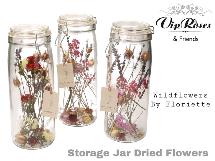 DRIED STORAGE JAR