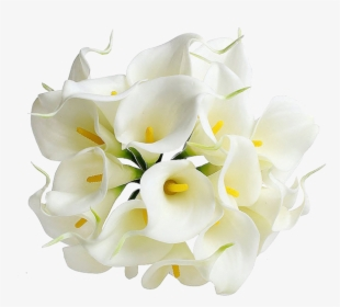 <h4>Callas White 80cm EC</h4>