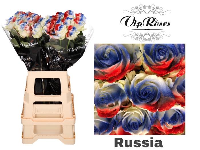 R GR FLAG RUSSIA
