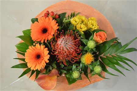 <h4>Thulehouder Oranje</h4>