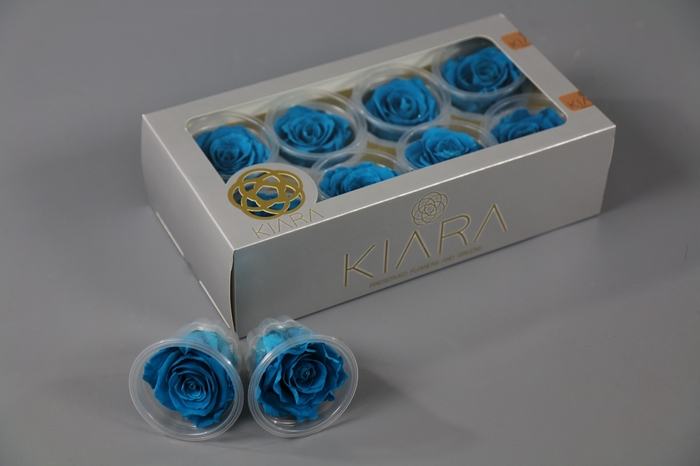 <h4>Rosa Preserved Aquamarine Rose</h4>