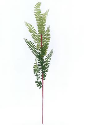 <h4>Af Fern Spray Mini</h4>
