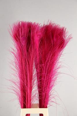 <h4>Feather Peacock Cerise 110cm</h4>
