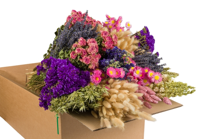 <h4>DRIED FLOWERS MIX IN BOX PINK</h4>