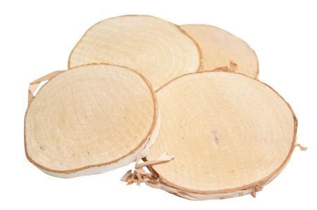 <h4>Basic Birch Slice 10pc D9-10</h4>