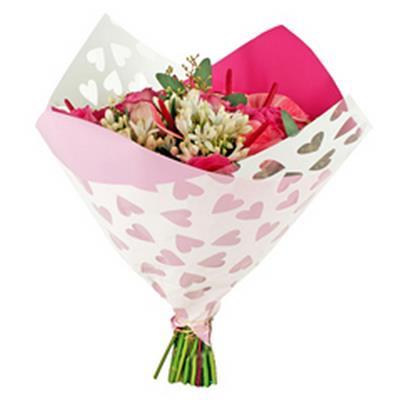 <h4>Housses 35x35cm Opp50 Oblique Clear Hearts rose</h4>