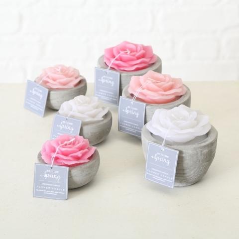<h4>Candle pot Blume, 3 ass., H 6 cm, D 7,5 cm, Wax, Pink Wax rose</h4>