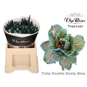TU DU DOUBLE DUSTY BLUE