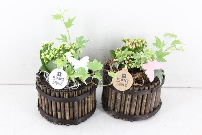 arr. PL - Bamboe pot 285/8 - roze/wit