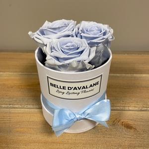 Box rd 10cm wit-lavendel