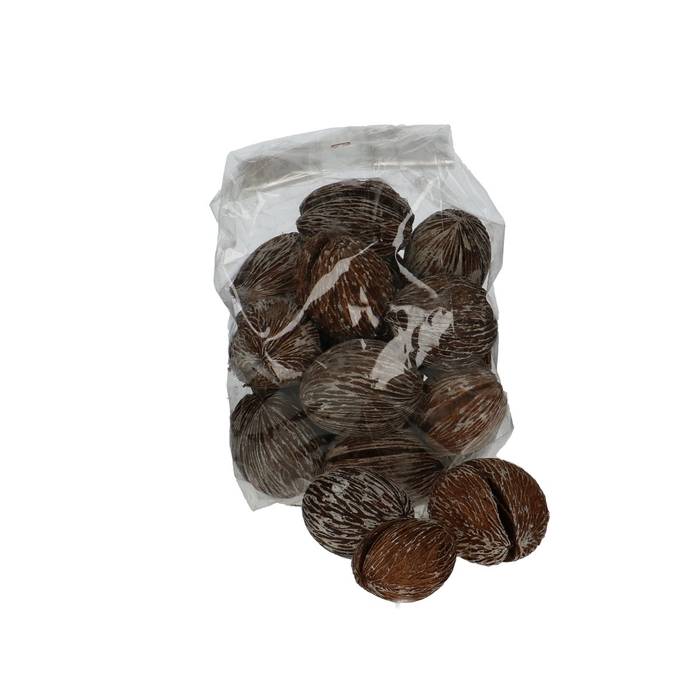 <h4>Dried articles Mintolla ball 6-10cm x20</h4>