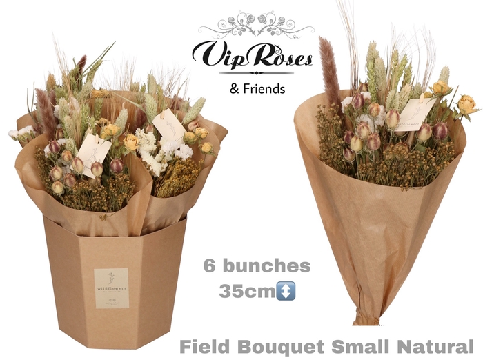 <h4>DRIED BOUQUET SMALL NATUREL</h4>