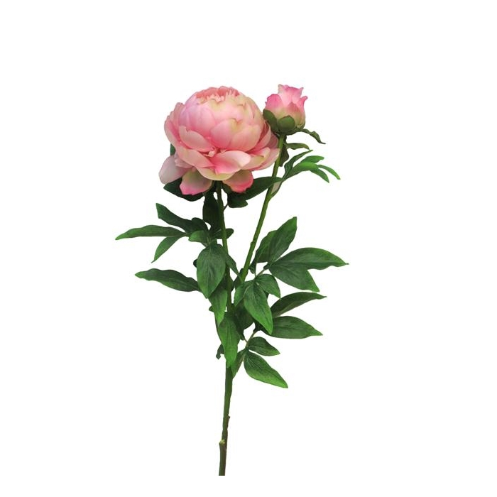 <h4>SILK FLOWERS - PEONY LARGE PINK X2 93CM (HEAD 14CM, BUD 6CM)</h4>