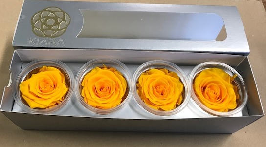 <h4>Rose Sunny Yellow Super(4)</h4>
