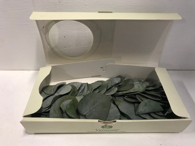 <h4>Eucalyptus leaves 150pc groen</h4>