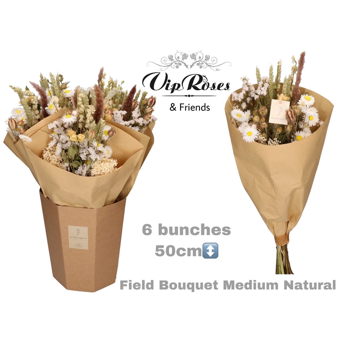 <h4>DRIED BOUQUET MEDIUM NATUREL</h4>